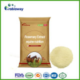 Cost Effective Horse Rosemary Extract Equine Animal feed Supplement