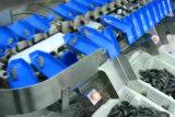 Poids du convoyeur chinois trieur pour industrie alimentaire de la machine avec système de rejet automatique