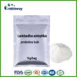 乳酸桿菌のAcidophilus Probioticsの卸し売りバルク補足はNutraceuticalsを指示する