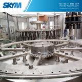 Автоматический завод очищения минеральной вода