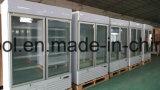 Raffreddamento ad aria dritto della cucina commerciale congelatore del portello due di vetro