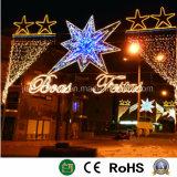 Het Licht van de Decoratie LEIDENE van de van uitstekende kwaliteit Straat van Kerstmis