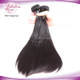 Virgin Hair Tangle Free Silky Straight Malaysian Hair
