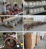 Schwanzloser 1kw 48VAC Dauermagnetgenerator (SHJ-NEG1000)