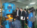 Fabricant divers d'alimentation de la rondelle à ressort avec le zingage (HS-SW-0006)