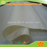 Preiswertes Kleidungs-Anwendungs-Plotter-Papier