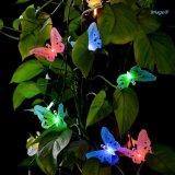 태양 광섬유 나비 끈 빛
