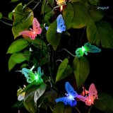 Fibra óptica solar Butterfly Luzes de String