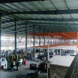 Grande aumento laterale messo di buona qualità della fabbrica per la strumentazione di forma fisica di ginnastica