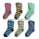 Terry u. normale Socken-Strickmaschine