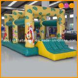 Moonwalk inflable del tigre con la piscina inflable de la bola (AQ401)