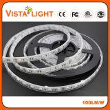 ナイトクラブのためのIP20 DC24V RGB LEDライトストリップ