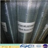 熱い浸された溶接された金網ロール1.2X30m 50*50mm