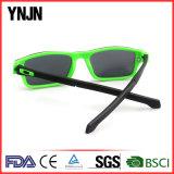 Grampo magnético do frame relativo à promoção do policarbonato de Ynjn nos óculos de sol (YJ-2119)