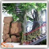 Вал Ficus баньяна домашнего украшения искусственний