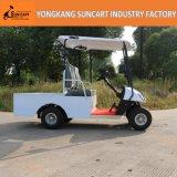 卸売2のSeatersの電気輸送のカート、小さい輸送によってカスタマイズされるゴルフ車