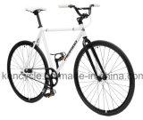 Dehnbare örtlich festgelegte Gang-einzelne Geschwindigkeit Fixie städtisches Straßen-Fahrrad Sy-Fx70024