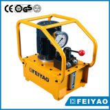 La chiave elettrica idraulica certificata iso pompa Fy-Klw-3000