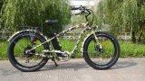 grande motore di potere 750With500W per le elettro bici della bicicletta elettrica fatte in Cina
