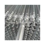 El andamio galvanizado de acero del tubo Guarnición-Tuerce el tubo del bloqueo (TPSTLT001)