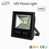 100W LED Flut-Licht mit Epistar für im Freienbeleuchtung