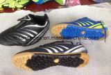 الرخيصة أحدث أحذية نموذج كرة القدم أحذية رياضية للرجال (FF1110-1)