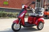 ثلاثة عجلة درّاجة ثلاثية كهربائيّة مع سلّة خلفيّة لأنّ يعيق
