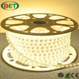 Shenzhenled Iluminación 5050 60LEDs ETL 50m 0,5 m tira LED / Corte