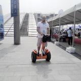 Het goedkope Elektrische Elektrische Skateboard van de Blokkenwagen van de Zwerver van de Wind van de Autoped Elektrische