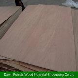 [س] شهادة خشب رقائقيّ تجاريّة لأنّ أثاث لازم