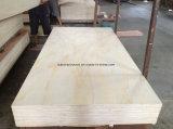 5mm Higer Grado Pino Radiata madera contrachapada para Muebles