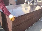 la película de 18m m Dynea Brown hizo frente a la madera contrachapada para el emplazamiento de la obra