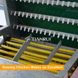 機械を集める自動鶏の卵の養鶏場の卵