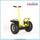 2 rouleau Electric Standing Scooter pour Adults