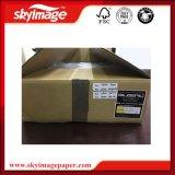 최신 Selling 350ml/Bag Original 일본 Bpg Sublimation Ink