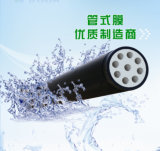 Industrial WastewaterのDealへの管状のMicrofiltration Membrane System