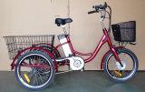 Bike груза 3 колес электрический