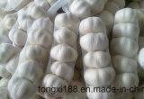 Белый свежий чеснок в Китае
