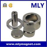 희토류 네오디뮴 구획 또는 반지 또는 원판 또는 막대 또는 실린더 또는 관 자석 (MLY201)
