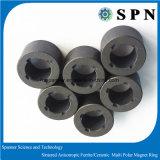 Ferrito permanente/ferrito sinterizzato Magne/Ceramict per il rotore