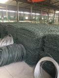 Caixa do PVC Gabion/cestas revestidas de Gabion com cor/obscuridade cinzentas - cor verde