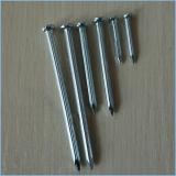 Clou 6 concret galvanisé de l'acier 1/2 '' - '' pour la construction
