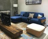 Sofá blanco moderno de la sala de estar del sofá de la tela de Divany