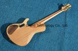 Guitarra baixa de corda do costume 5 de China com ébano Fretboard (GB-55)