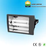L'énergie efficacement la lumière crue de la lampe d'induction de l'éclairage (LG0550-3)
