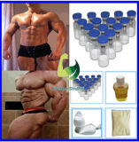 Polvo oral ideal Sarms Yk11 CAS 431579-34-9 para el Bodybuilding
