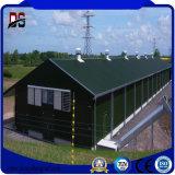 Casa de aço da exploração avícola dos edifícios de exploração agrícola para a galinha