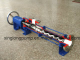 Xinglong 진보적인 구멍 점성 액체를 위한 나선형 단청 나선식 펌프