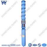 La pompe à eau de l'ensemble de la pompe submersible turbine verticale avec le moteur