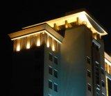 LED 전구 옥외 점화 벽 세탁기 Ce/UL/FCC/RoHS (H-361-S48-W) Iluminacion